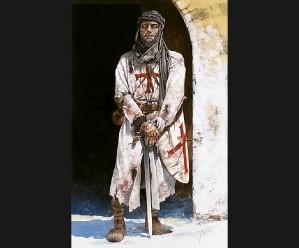 RogueOps Novels adventure Thrillers